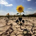 klimatski promenii
